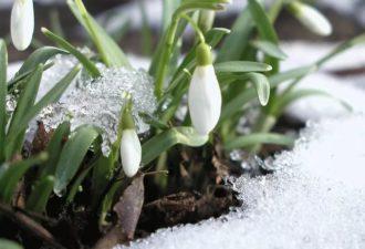 Прогноз на 1-5 марта