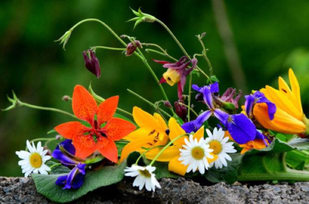 Притча о волшебном цветке.