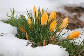 Прогноз на 5 марта