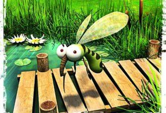 8 убийственных ароматов против комаров. Актуально, как никогда