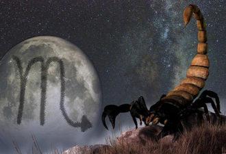 Почему стоит дружить со Скорпионами