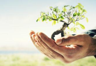 Законы процветания: как изменить свою жизнь за неделю
