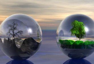 Как добиться баланса Инь и Ян в жизни: пять элементов Фен-шуй