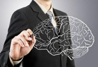 12 лучших хобби, которые не дадут вашему мозгу деградировать!