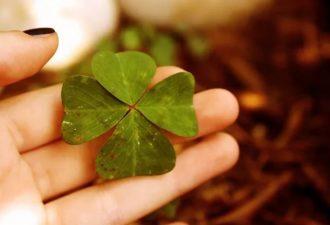 Приметы, которые предвещают удачу, счастье и любовь!