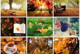 7 вещей, которые необходимо сделать этой осенью