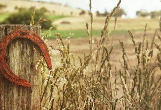 Законы везения: от чего зависит наша удача