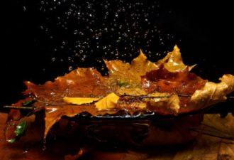Энергии октября волшебны и созидательны
