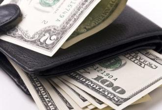 Какие кошельки привлекают деньги
