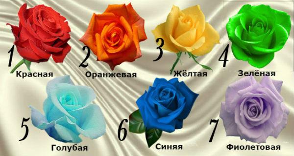 Выбранная роза расскажет о вашей настоящей чакре