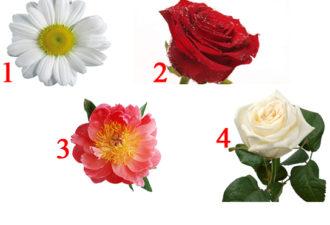 Выбранный цветочек откроет тайну вашего темперамента и даст рекомендацию кто вам по настоящему подходит