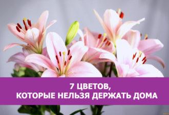 7 цветов, которые нельзя держать дома