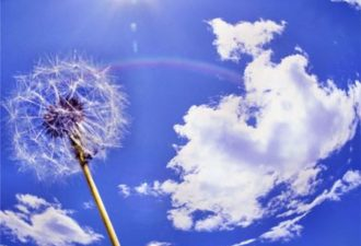 Весенние обряды на благополучие, процветание и успех