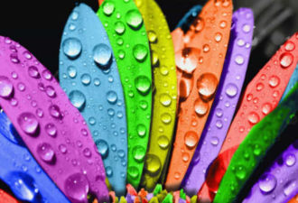 Стихии Знаков Зодиака: какой цвет привлечет к вам удачу и деньги