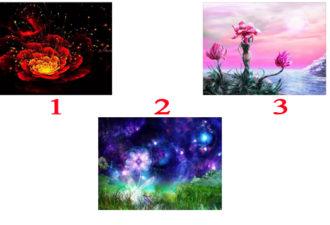 Точно известно — жизнь одна, и чтобы день задался выберите волшебный цветок