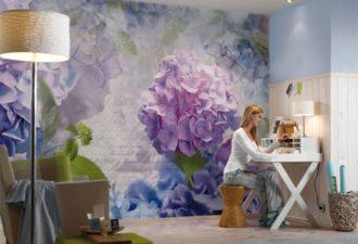 Как окна, свет и цвета стен влияют на наше самочувствие