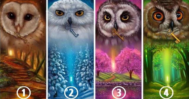 Выберите сову и узнайте, о чем говорит ваш выбор!