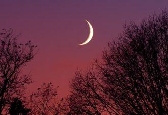 Заговоры на деньги, любовь и удачу на растущую Луну