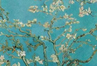 Японские традиции, которые помогут сохранить мозг молодым и здоровым