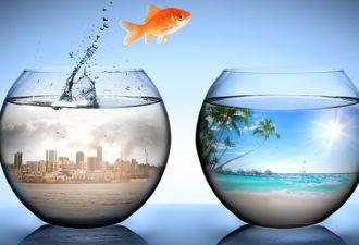 Как изменить свою жизнь и научиться управлять реальностью?