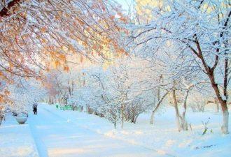 Зимние ритуалы на деньги, успех и любовь