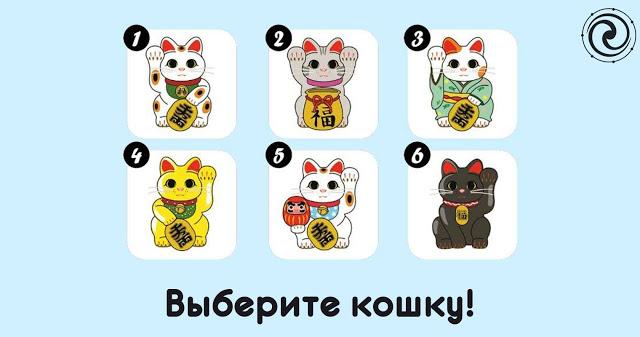 Выберите кошку, которая вас больше привлекает!