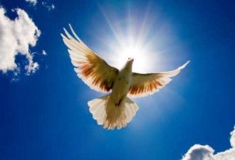 Молитвы о счастье и благополучии на Сретение Господне
